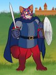 2019 3:4 4_toes 5_fingers anthro barefoot belt biped building canid canine cape castle checkered checkered_clothing checkered_mask clothed clothing cosplay countershade_face countershading digital_media_(artwork) fingers fox fur gloves grass handwear headgear headwear hi_res holding_object holding_sword holding_weapon hyenafur jonas kody_rowan_(character) looking_at_viewer male mammal mask melee_weapon multicolored_body multicolored_fur outside pattern_clothing plantigrade red_body red_fur redwall shield slagar_the_cruel smile solo standing sword toes topwear tunic two_tone_body two_tone_fur weapon white_body white_fur